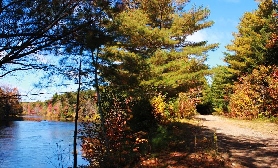 LaHave River Trail