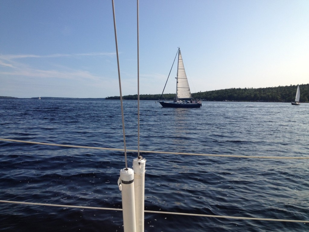 sailing1 (Large)