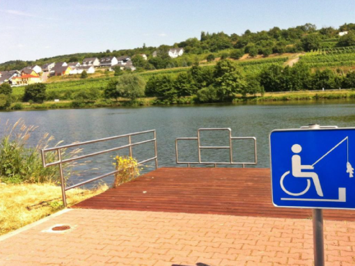 Guidelines for Accessible Recreation Report and LCLC Audit