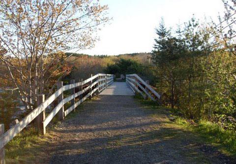 Roseway River Trail
