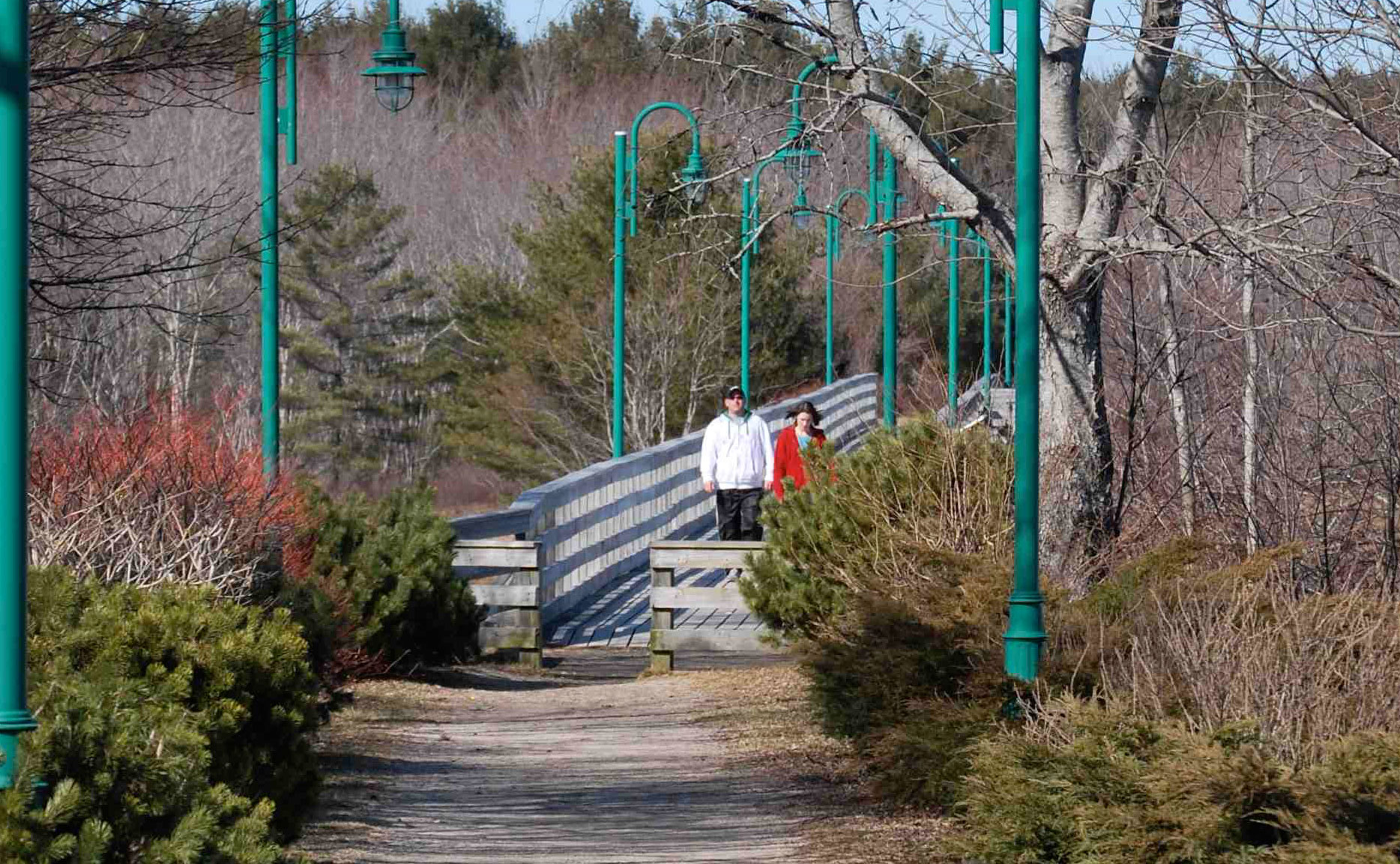 Trestle Trail