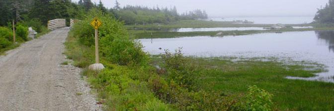Woodland Multiuse Trail