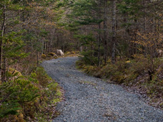 Black Loyalist Heritage Trail