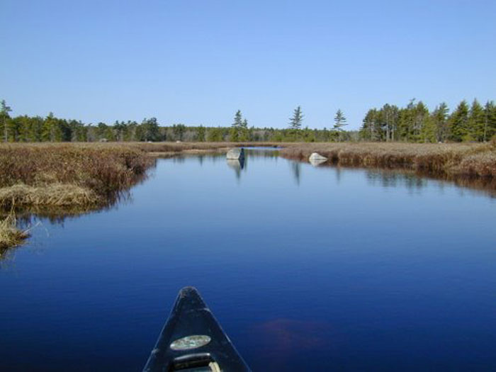River Route 8: The Lower Shelburne River