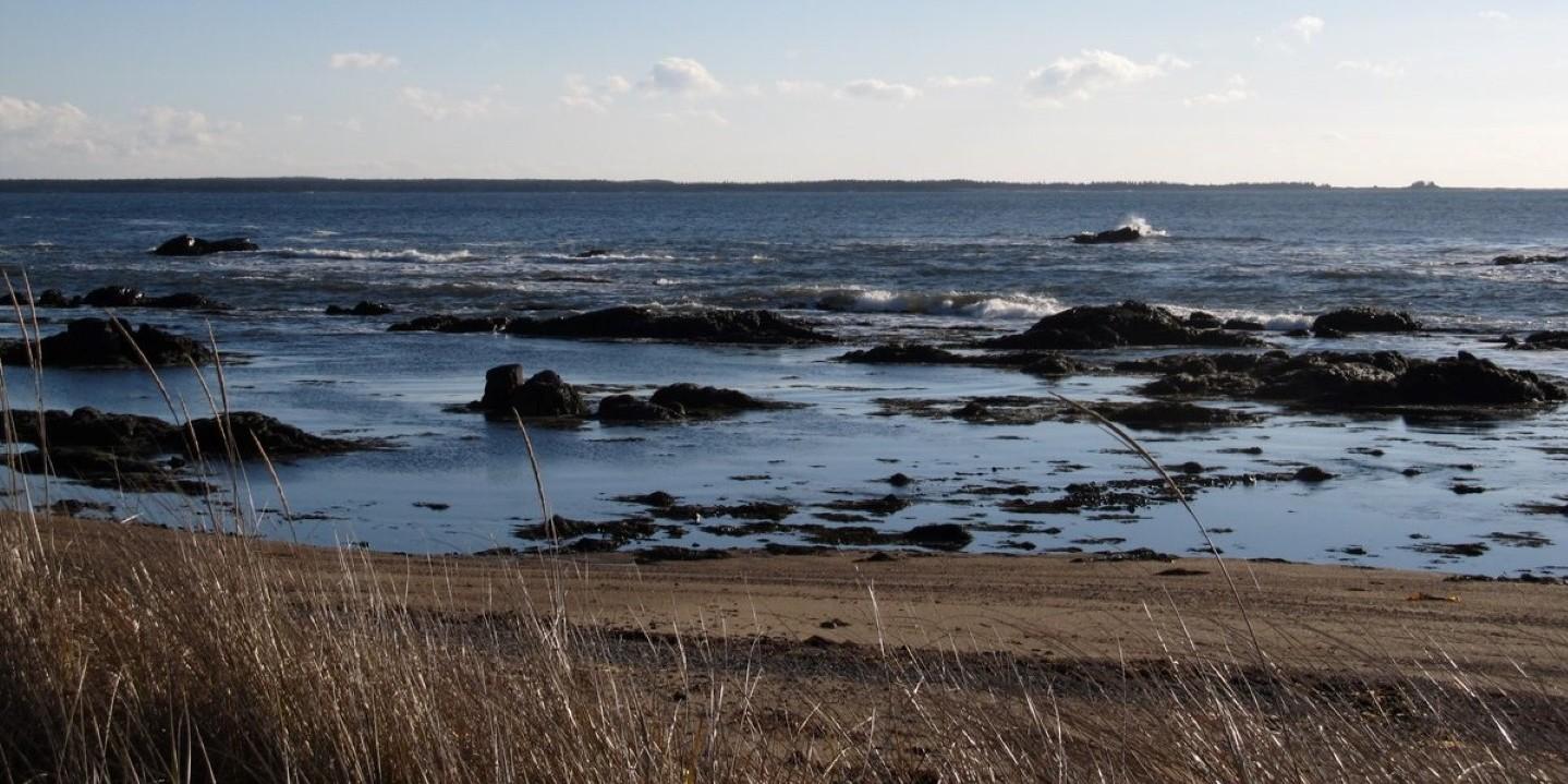 Our favourite spot – South Shore Connectors Blog