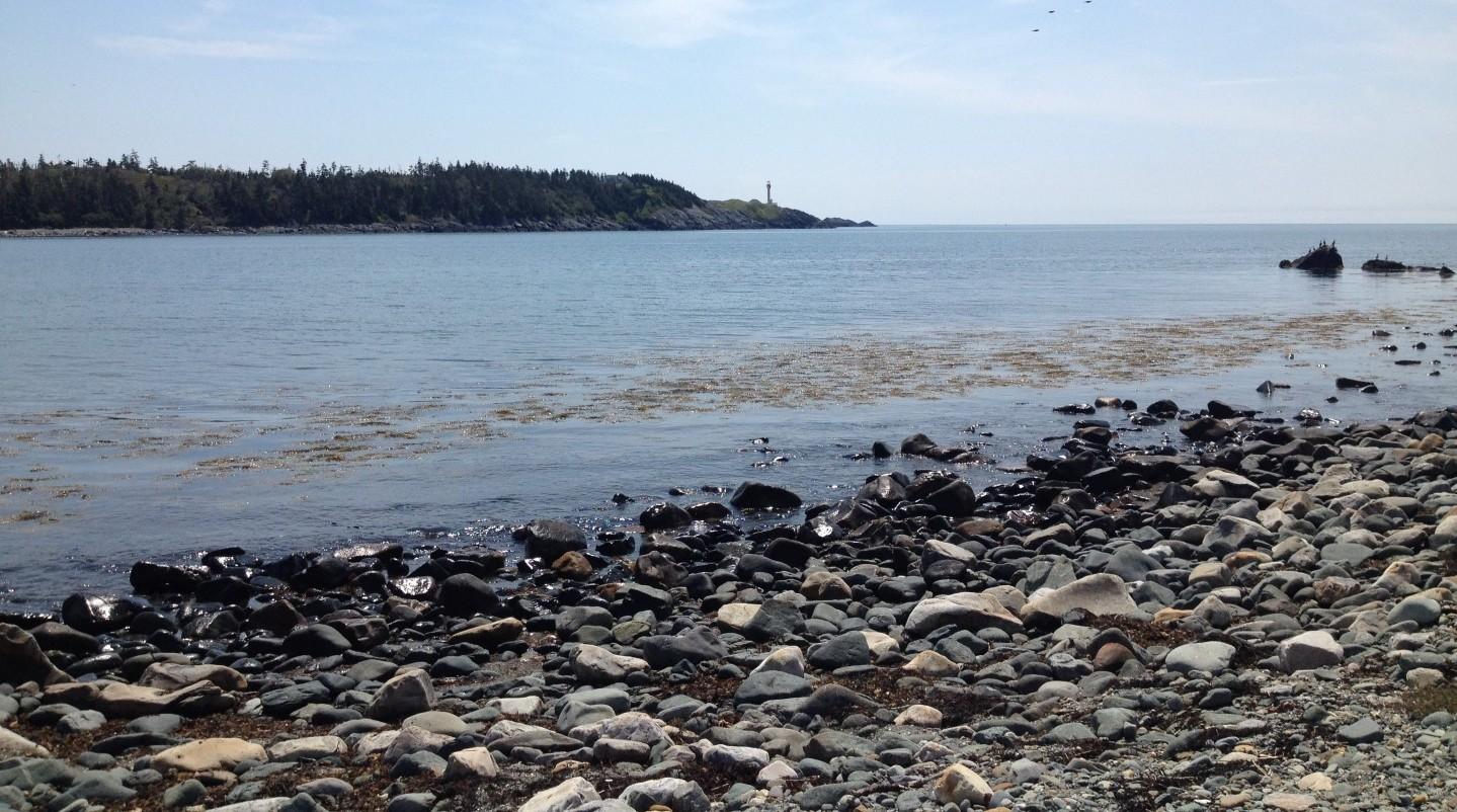 Beaches galore – South Shore Connectors blog